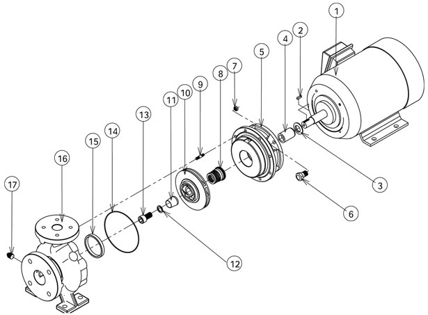 washer spring diagram  washer  free engine image for user